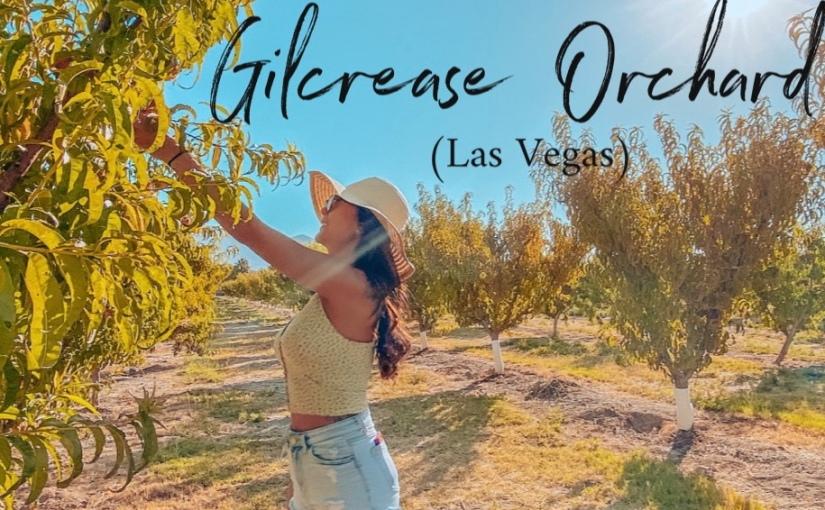 Gilcrease Orchard (LasVegas)